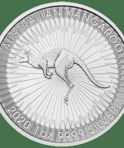 2020 Silver kangaroo