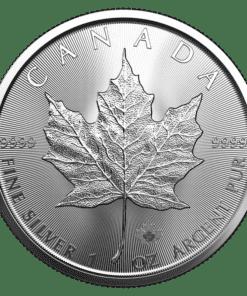 2021 Silver Maple